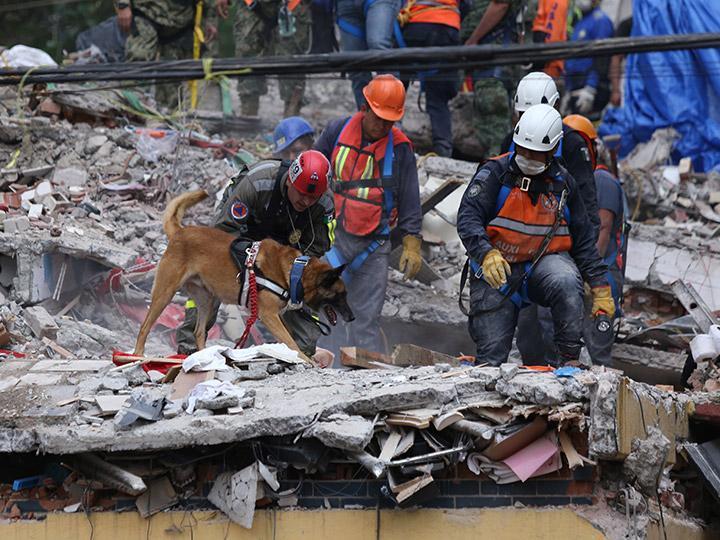 Efectos de sismos serán moderados: Banxico