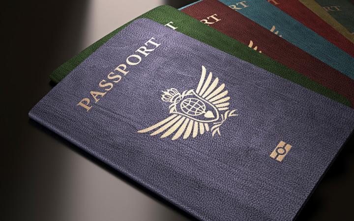 ¿Por qué sólo hay 4 colores de pasaportes en el mundo?