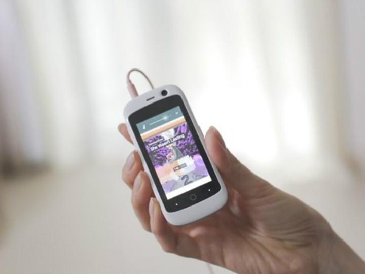 La característica más destacada es que Jelly es muy pequeño, tiene apenas 9 centímetros de largo. Foto: Kickstarter.
