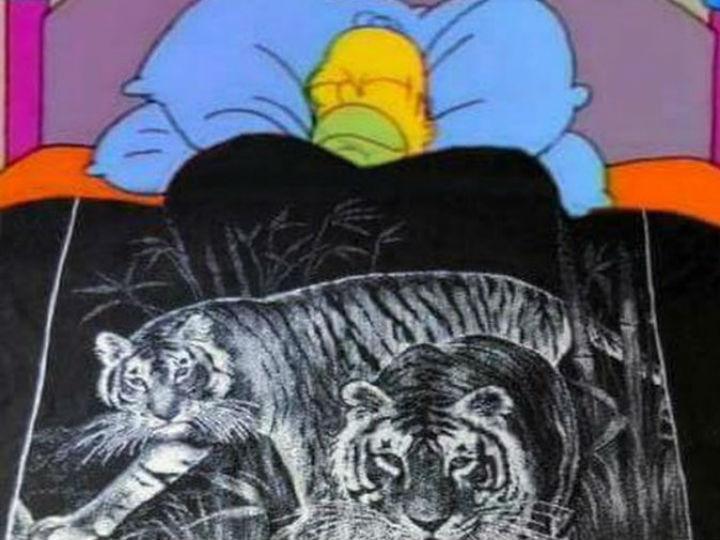 El origen del cobertor de tigre que nos está salvando del frío | DineroenImagen