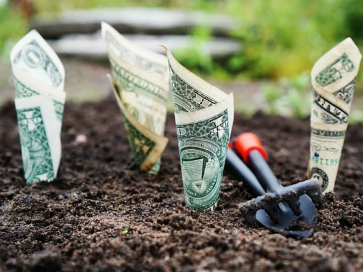 Cómo elegir fondo de inversión para que tu dinero crezca rápido