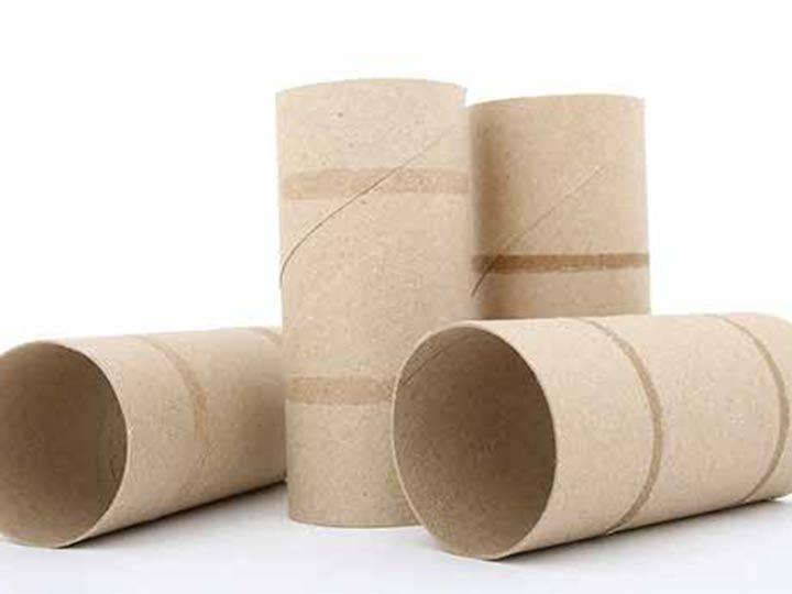 Usos y costumbres: El papel higiénico, ¿al bote o al inodoro?
