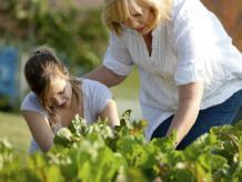 El apoyo y aliento de los padres es fundamental para el éxito de un emprendedor en sus proyectos. Foto: Photos.com