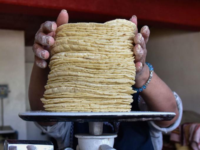 Pagaste más caro el kilo de tortillas o huevo? Profeco los multará hasta por 3 mdp